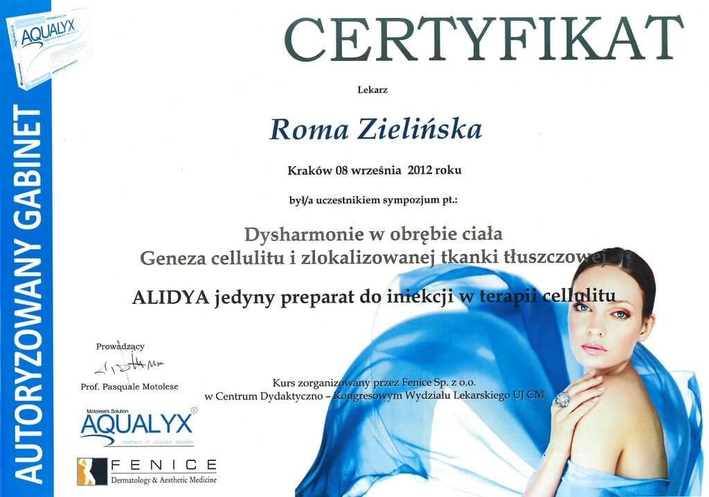 certyfikat uczestnictwa wsympozjum