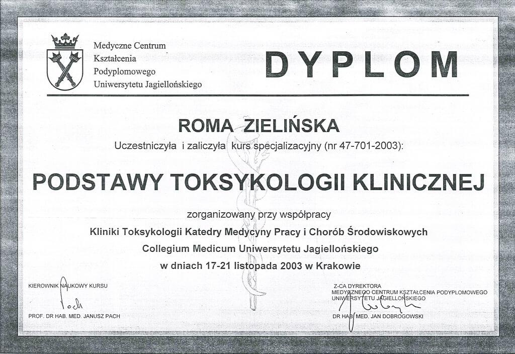 dyplom uczestnictwa wkursie